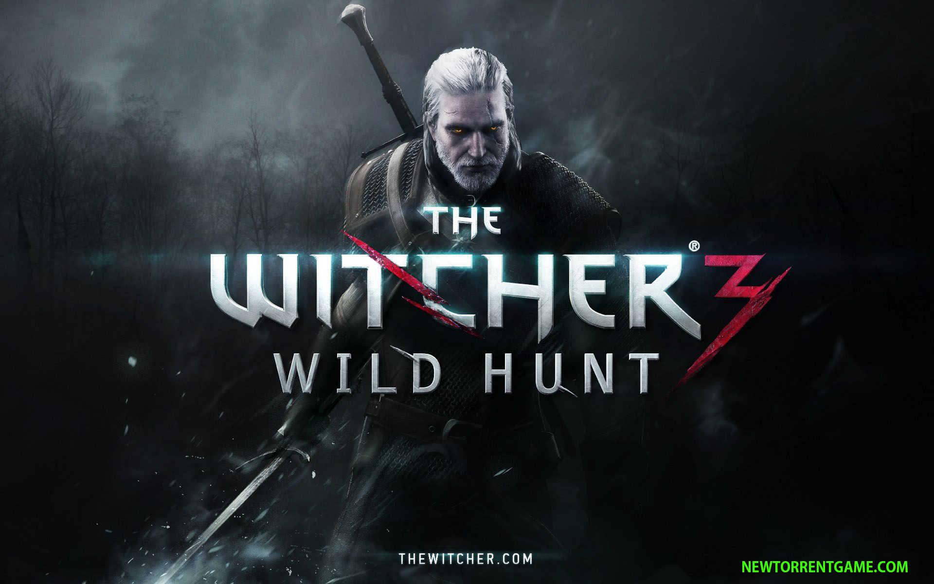 The Witcher 3 Wild Hunt c rack download pc